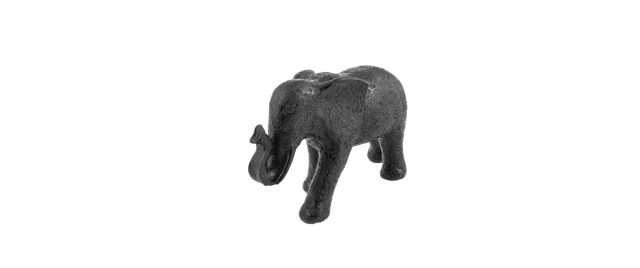 Noor, black elephant